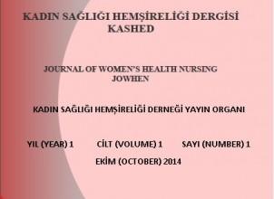 Cilt 1, Sayı 1 (2014)